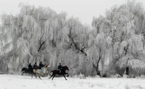 Epiphany Horse Race in Romania