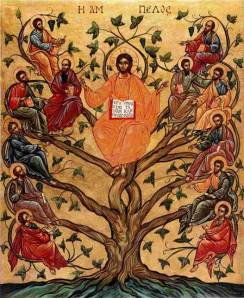 slightly bizarre image of Jesus the Vine