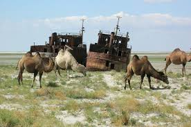 Sign of the times: Aral Sea dried out.