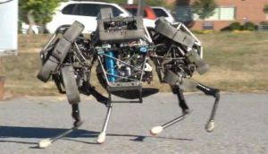 The (robot) dogs of war