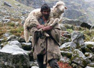 shepherd_on_the_way_to_hampta_pass1